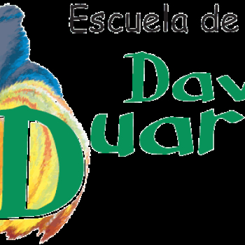 Escuela de baile david duarte go dance for Escuela danza san sebastian de los reyes